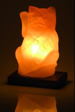 lampe de sel himalaya chat chinois